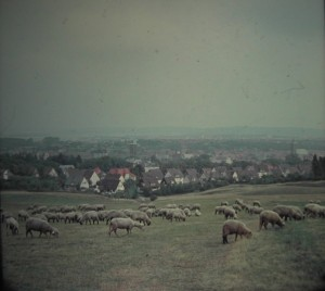 view on the Mediëval town of Goslar from the Rammelsberg. August 1964