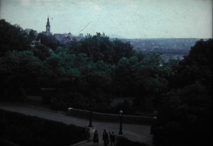 Every big European city has its public Gardens, Beograd too! Agust 2 1965.